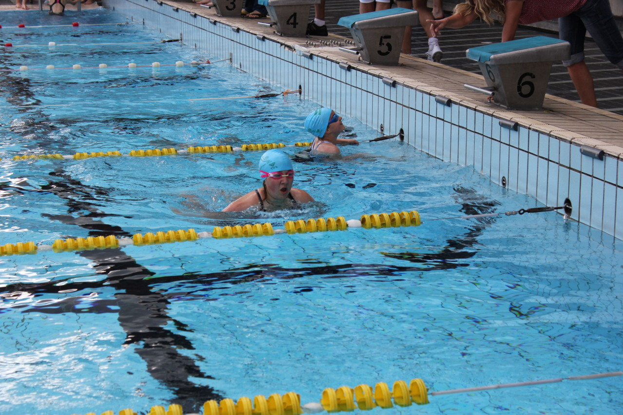 Soir e des 50 m tres au stade nautique de caen for Piscine 50 metres